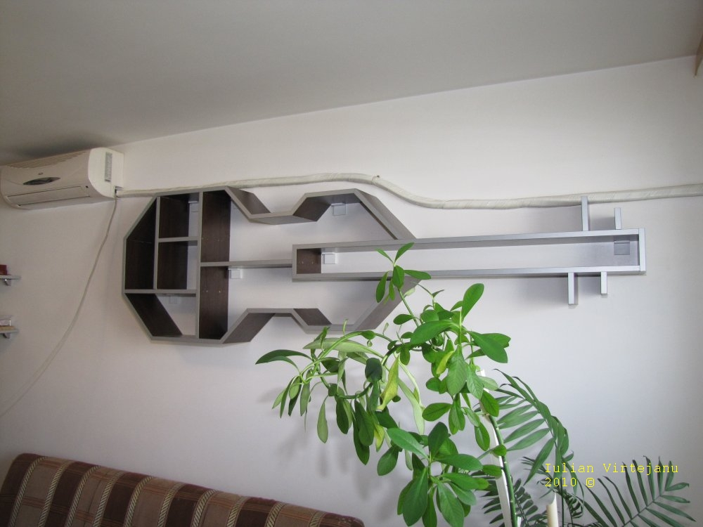 http://hex.ro/wp/wp-content/uploads/2010/06/violin-with-plant.jpg